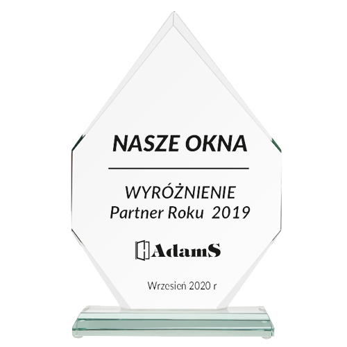 WYRÓŻNIENIE <br> Partner Roku 2019